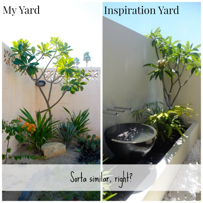 My Yard Inspiration