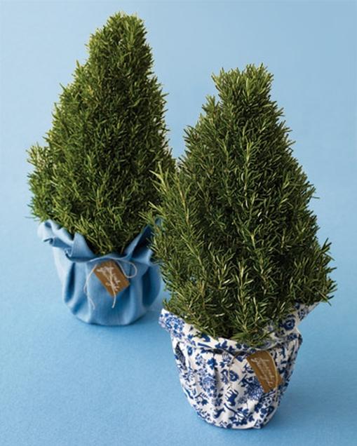 Rosemart Tree - Martha Stewart.jpg